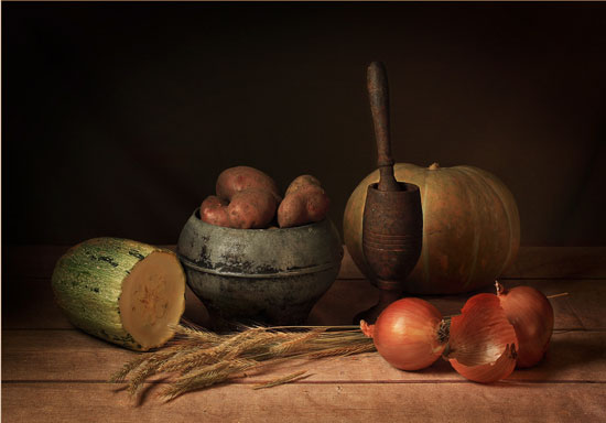 Modest-gift-of-autumn Fantastic Still Life Photography Ideas To Inspire You